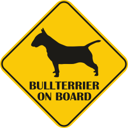 Sticker auto - Bullterrier
