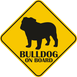 Sticker auto - Bulldog