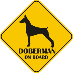 Sticker auto - Doberman