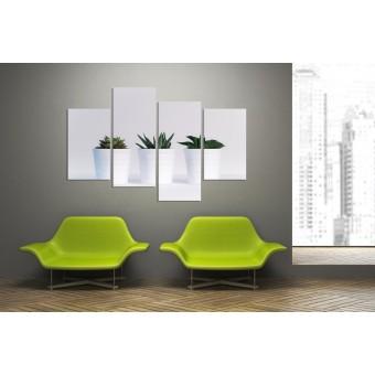 Tablou canvas 4 piese - Plante in ghiveci