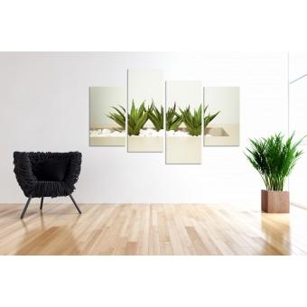Tablou canvas 4 piese - Plante