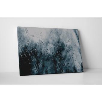 Vreme ploioasa