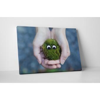 Monstrulet verde