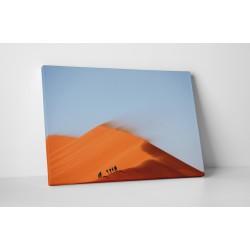In mijlocul desertului