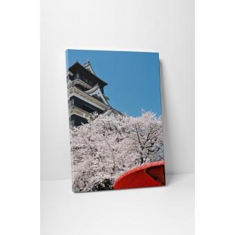 Cirese japoneze