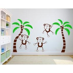 Maimute haioase - MultiColor