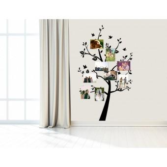 Copacel cu fotografii