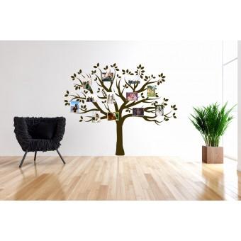 Fotografiile din copac