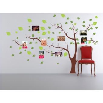 Copac cu amintiri