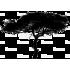 Copacul puterii