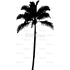 Palmierul