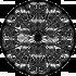 Simbol celtic