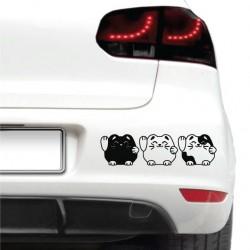 Sticker auto - Trei pisicute