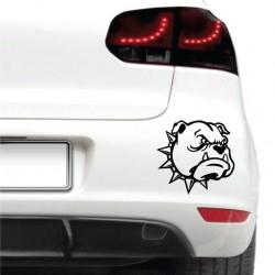 Sticker auto - Caine