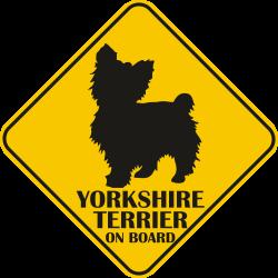 Sticker auto - Yorkshire terrier