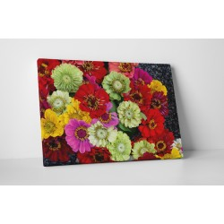 Buchet de flori colorate