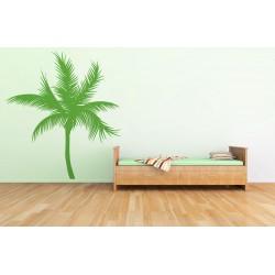 Palmier exotic