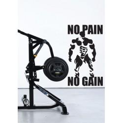 No Pain, No Gain 2